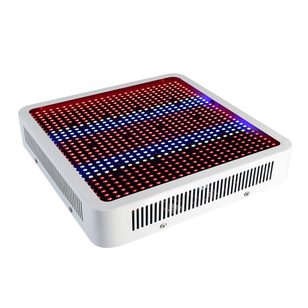 1pcs High Power Full Spectrum 800W Double chips Led grow light aquarium led lighting Hydroponic Systems Indoor grow Box